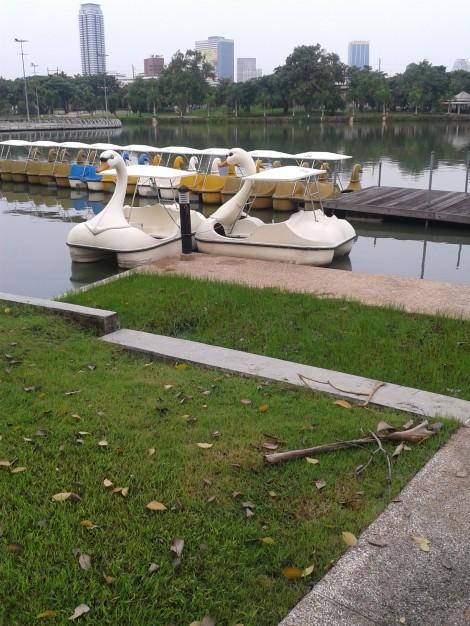 perahu angsa untuk menyusuri danau ^^